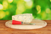 Cheese with mold and knife on the cutting board on bright green background — Stock Photo