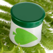 Jar of cream with branch of fern isolated on white — Stock Photo #12404628