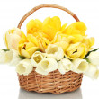 Beautiful tulips in basket isolated on white — Stock Photo #12407148