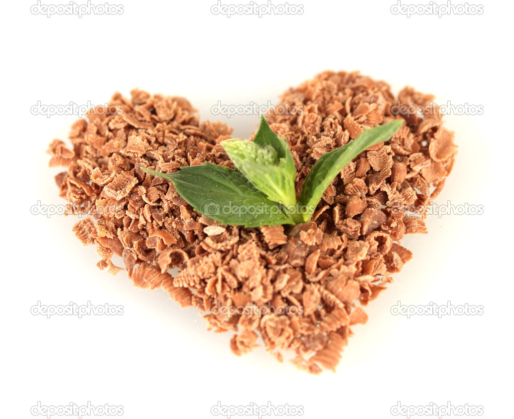 The heart of the chocolate crumb and mint isolated on white — Stock Photo #12401407