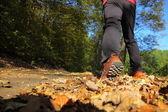 Hombre ruta a campo traviesa en bosque otoñal — Foto de Stock