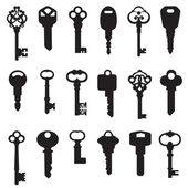Set chiave — Vettoriale Stock