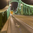 Stock Photo: Freedem bridge in Budapest