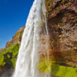 Seljalandsfoss — Photo #11989268