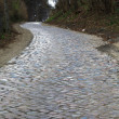Stock Photo: Old cobbled road