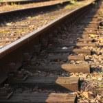 Rail Road Tracks — Stock Photo #11322212