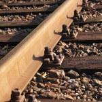 Rail Road Tracks — Stock Photo #11715987
