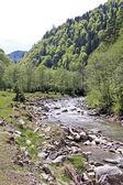 Mountain creek — Stock Photo