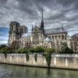 Notre Dame cathedral, Paris — Stock Photo #11534520