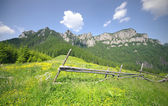Mountain landscape in summer — Stock Photo