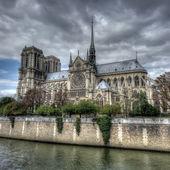 собор нотр-дам, париж — Стоковое фото