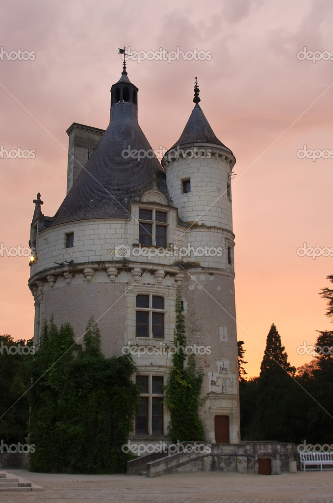 Tower of Chenonceau Castle, France — Stock Photo #11638894