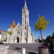 Matthias Church — Stockfoto #11648037