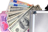 Case with money on an isolated — Stock Photo