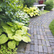 Stock Photo: Garden Paver Path with Plants and Grass
