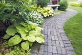 Garden Paver Path with Plants and Grass — Photo