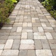 Stock Photo: Garden Brick Paver Path Walkway