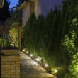 Backyard Garden Path at Night - Stock Photo