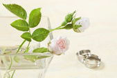 Mariage rose — Photo