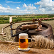 Landscape with beer — Stock fotografie