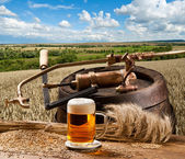 Landscape with beer — Stock Photo