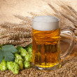 Beer glass — Stock Photo #11224650