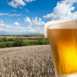 Beer glass with landscape — Stock Photo