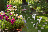 сад — Стоковое фото