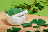 Ginkgo — Stock Photo