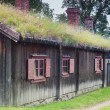 Scandinavian Traditional Cottage — Stock Photo