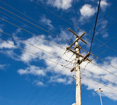 Power grid australian power pole electricity post — Stock Photo