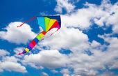 Colorful kite — Stockfoto