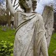 Brompton Cemetery — Stock Photo