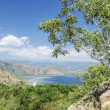 Stock Photo: Coast near dili east timor