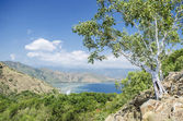 Coast near dili east timor — Stock Photo