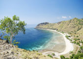 Beach and coast near dili in east timor — Stockfoto