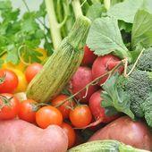野菜 — ストック写真