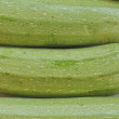 Courgettes zucchini — Stock Photo