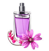 Women's perfume in beautiful bottle and pink flowers isolated on — Stock Photo