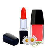 Red nail polish, lipstick and chamomile flowers isolated on whit — Stock Photo