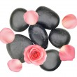 Black spa stones and pink rose with petals isolated on white — Stock Photo #12296048