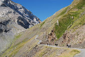 Hikers on the road along mountain Col de Tentes. — Stock Photo