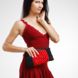 Pretty woman with a handbag. — Stock Photo #10826630
