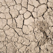 Stock Photo: Background of scorched earth.