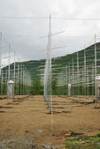 Field of antennas in Norwegian mountains. — Stock Photo