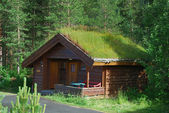 Wooden house with green roof in Scandinavian forest. — Stock Photo