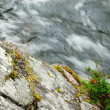 Blurred water flowing past mossy stone - Stock Photo