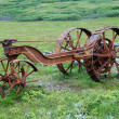 ������, ������: Old rusty machine in the green meadow