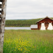 Sheds with dried fells among pasture fenced. — Stock Photo