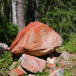 Reddish stone in green forest — Stock Photo #11026785